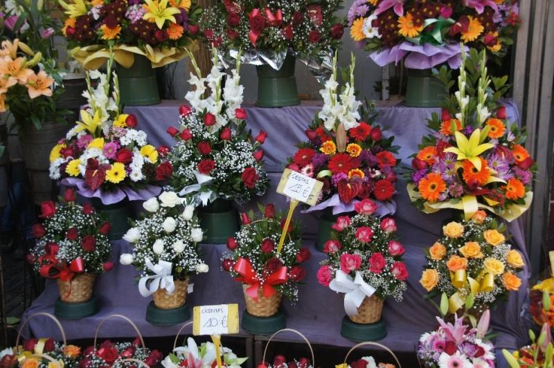 Die schönsten Blumen und das im Februar.