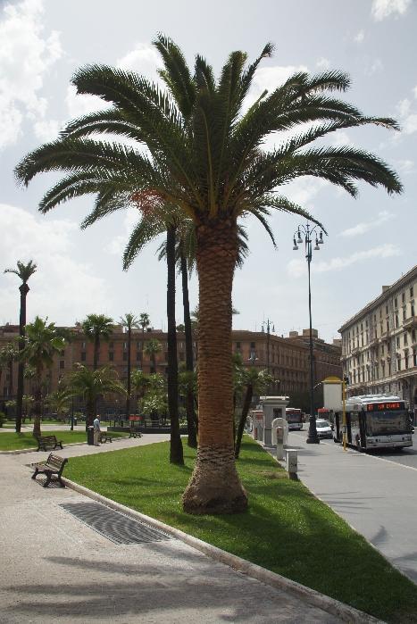 Piazza Cavour neben dem Palazzo Giustizia