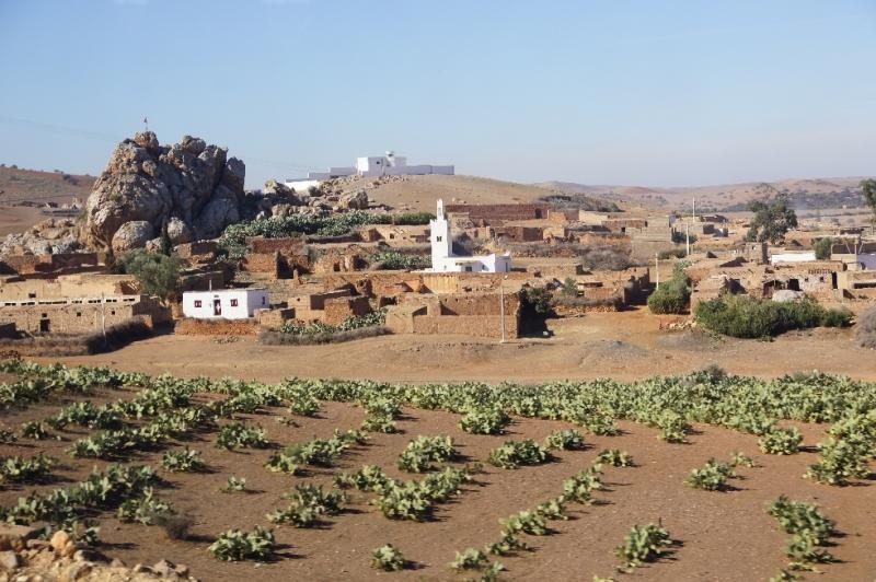 Wir kommen an kleinen Bauernhöfen vorbei, sehen Bauern mit Esel, ein paar Schafe und Ziegen. Die Landbevölkerung lebt anscheinend von der Landwirtschaft. Der Maultierkarren ist das Transportmittel Nr. 1. Kurz vor Marrakesch wird die Einöde ein wenig freundlicher.