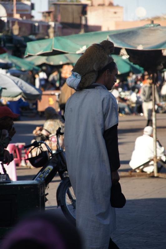 Da versuchte jemand seinen Affen auf Schultern der Touristen zu setzen. Solange der nicht saß, schien alles umsonst zu sein, aber dann wollte der 5 Euro dafür haben, obwohl der Tourist sich die ganze Zeit wehrte